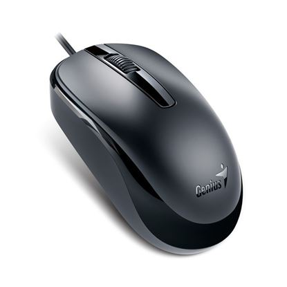 Picture of MOUSE GENIUS DX-120 USB BLACK