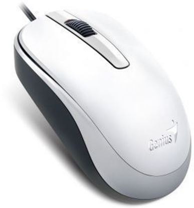 Picture of MOUSE GENIUS DX-120 USB WHITE