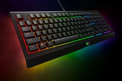 Picture of KB GAMING RAZER CYNOSA CHROMA MULTICOLOR